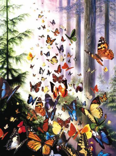 papillons-de-melodie1983408181_1